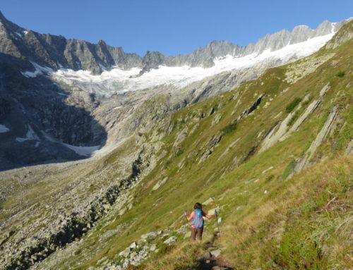 Alpinwandern Göscheneralp 15.-18. August