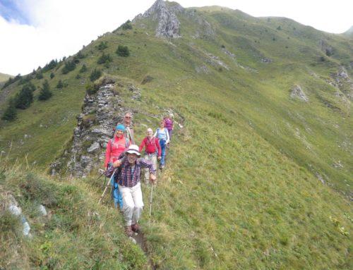 Walis Hungertour VII: Schafberg – der höchste Punkt des Sensebezirks