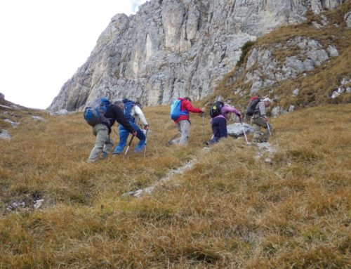 Walis Hungertour IX 06.11.18: Ochsen – Alpiglemäre und Clairette de Die