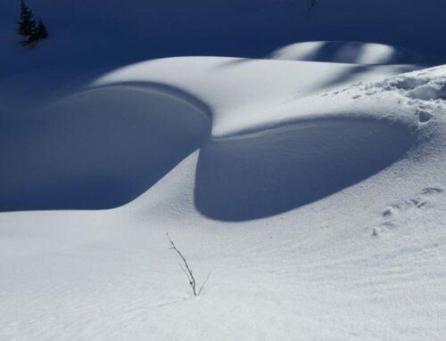 Schneeschuhtour Chrindi – Cheibenhorn 16 Febr. 19
