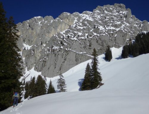 Spontane Skitour: Amélier 2002m – Husegg 1999m | 20.3.2019 mit Wali