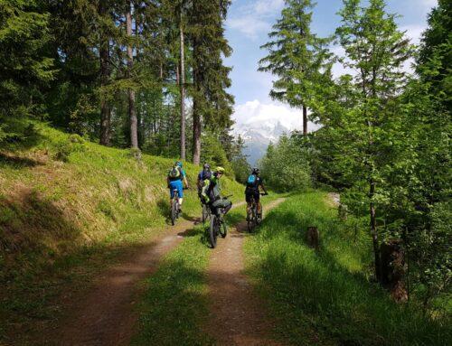 MTB Col du Lein (geplant Chasseron) 15.06.2019
