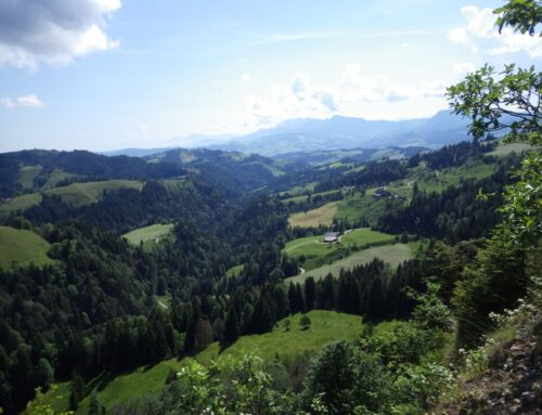 Dienstagspointe: Alle Bäche führen Gold – Wanderung im Napfgebiet mit Arlette und Gallus | 18.06.2019