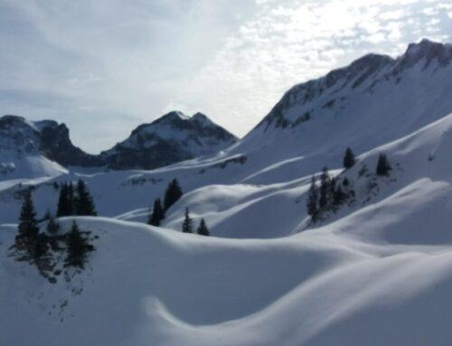 Schneeschuhwanderung Patraflon vom 08.02.20