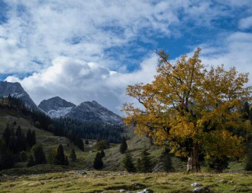 Velo-Bergtour Brecca-total-gemütlich…