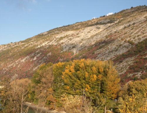 Himmlische Herbstfarben im Wallis 17. Oktober 2020