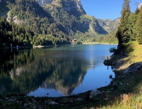 Wild Swimming im Lac de Taney